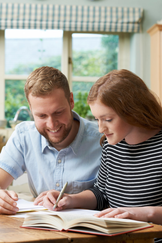 Home schooling: private tutoring as a temporary alternative to school